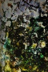 Mould Scape 10, Digital Print