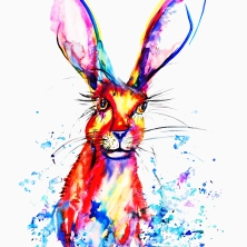 bright hare edited_edited-2