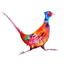 pheasant a3 100