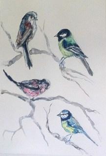 garden birds 1
