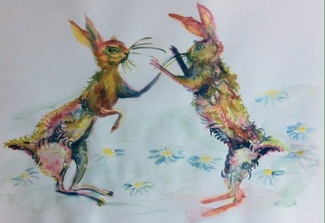 hares boxing 2